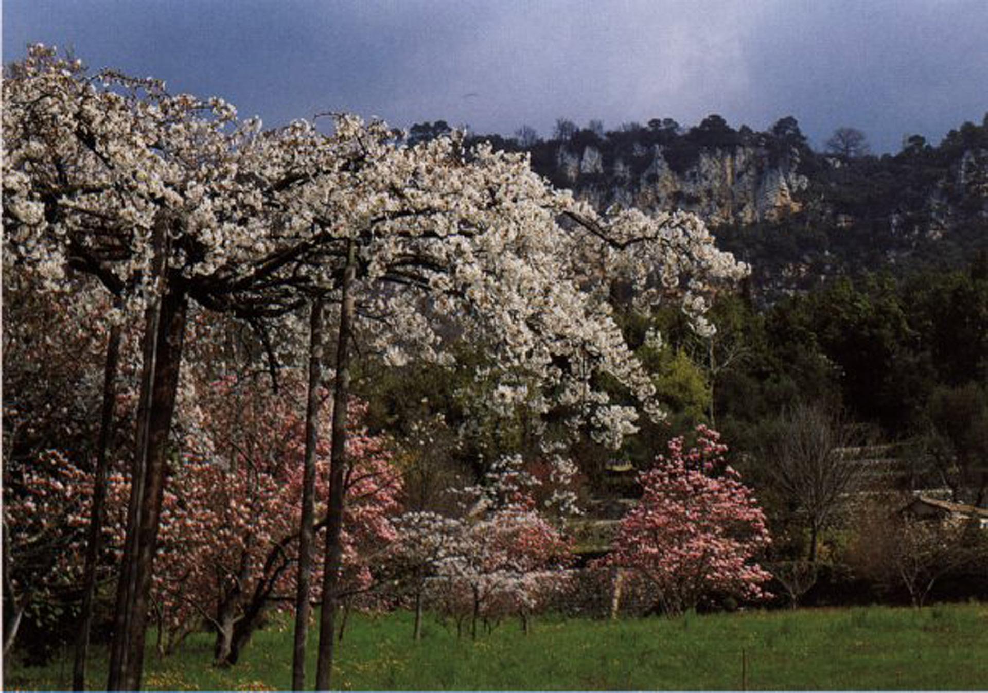 La route des jardins Département des Alpes Maritimes